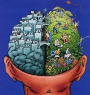 brain-connections